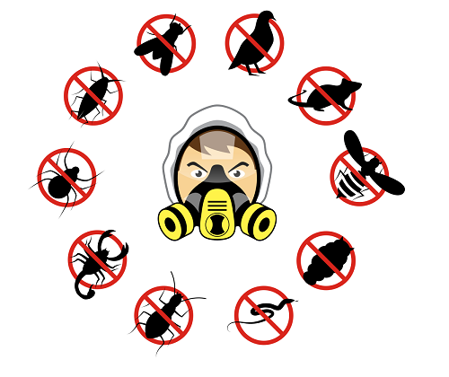 Pest Exterminator in Streamwood, IL